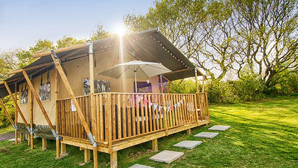 Top Isle Of Wight Camping Parks